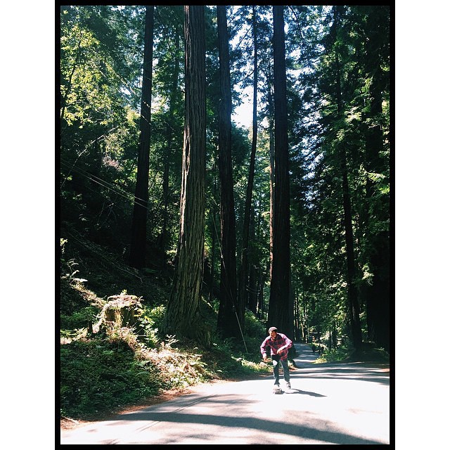 #RayBarbee pushing through the forest in Big Sur, CA.