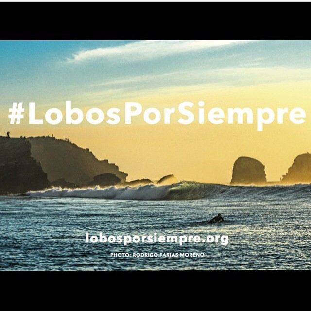 Proud of @stwcoalition alongside @surfnavarro in their campaign #LobosPorSiempre to preserve Punta De Lobos, a magical place in Chile. Cruise over to www.savethewaves.org and see how you can be part of the solution to protect this unique place forever!...