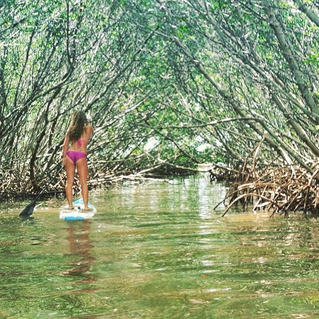 Over the river and through the woods with a SUP'n @bailey.rosen. #getoutthere #miolagirls #supbikini #supgirl #florida #explore #travel #naturelover