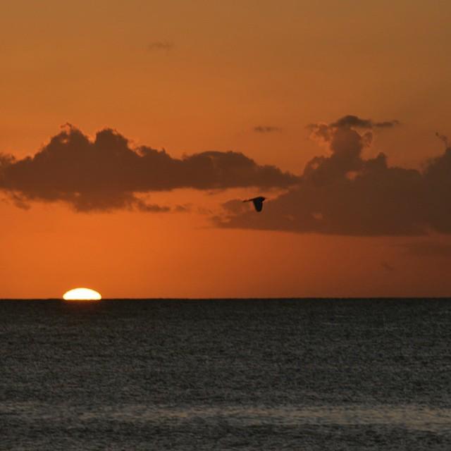 Otra puesta de sol para recordar y para encuadrar. #arte_of_nature #atardecer #animazing_nature #all_my_own #agean_fotografia #big_shotz #caribe #canon_official #d3100 #earthsights #fotosnomadas #igs_photos #instafoto_ve #ig_caribbean_sea #instatravel...