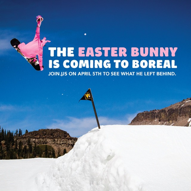 Make sure to head over to @borealmtn this Sunday too see what the Easter Bunny left behind!
