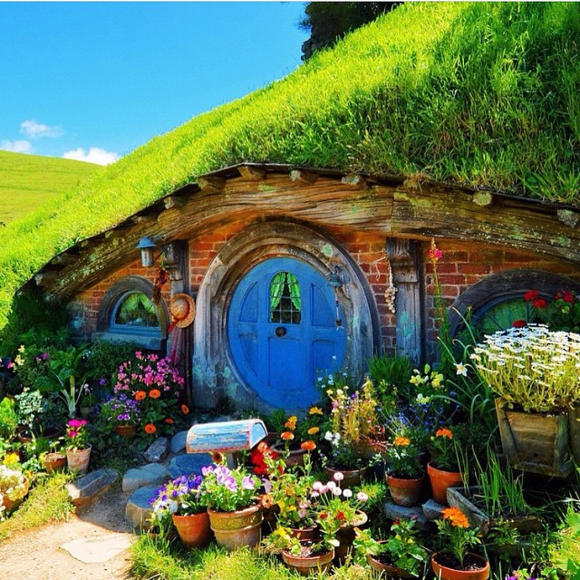 Quite a rootsy little pad found in the hillsides of #NewZealand . Who would you want to live here with? #GetOutside on this beautiful spring day and explore the great outdoors. . #HobbitsHouse