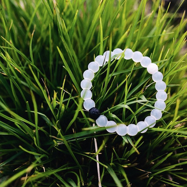 lokai hunt! #livelokai Thanks @bdytang