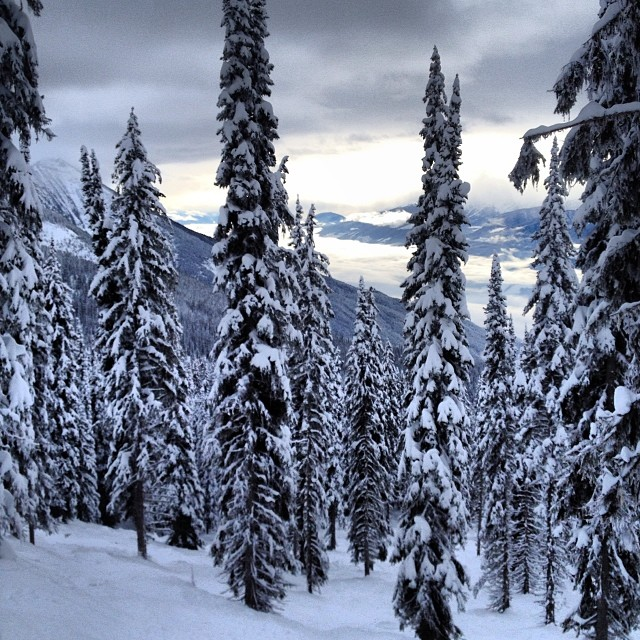 Missing this view right about now. Revelstoke, BC.