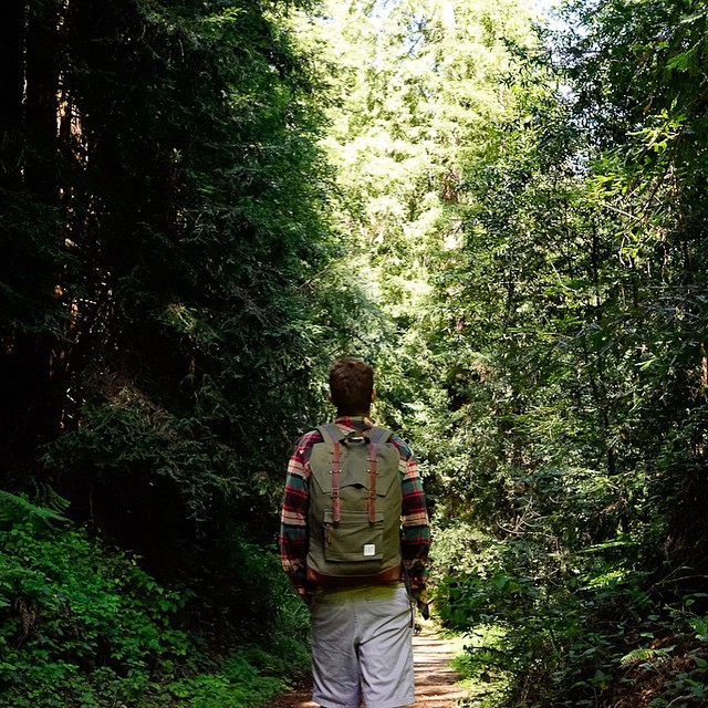 Gorkha rucksack camouflaged in its natural habitat. #organic #forest #redwoods #rucksack #backpack #natural #eco #estwst