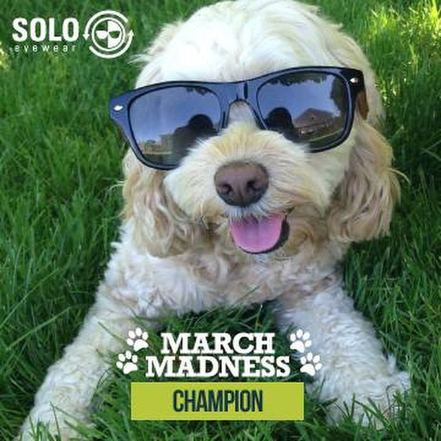 Here's our newest March Madness Champ!