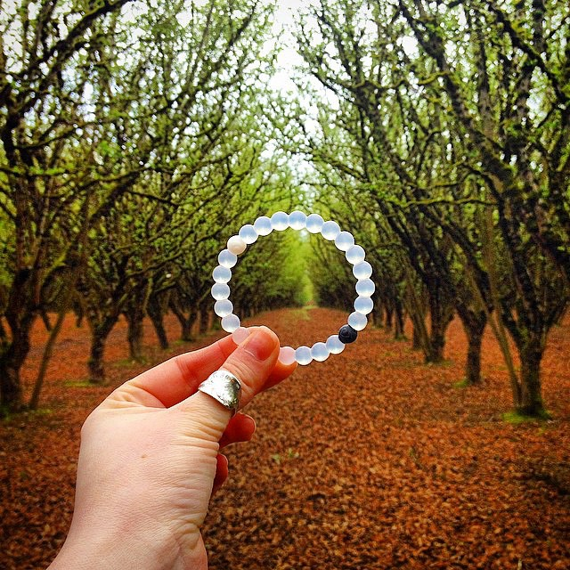 Into the woods #livelokai Thanks @dyhard747