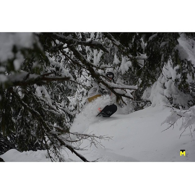 Even though spring is here, there are still pow turns to be made out there...here is @chaanderson  enjoying one on her Minx...thanks to @tylermediaphotos for sharing!
