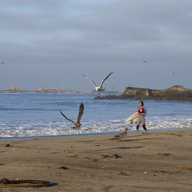 @gooch_d knows that sometimes you just have to run free with the seagulls ESPECIALLY if it's Friday