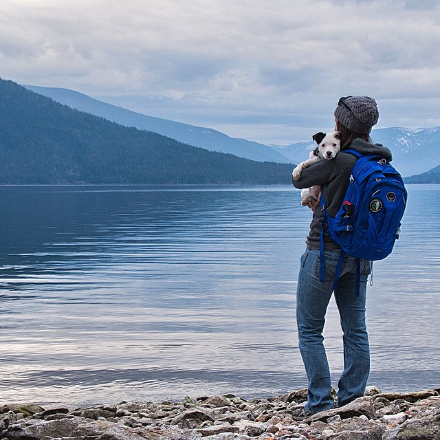 That puppy! Lindsey McPherson and Kya enjoying the view of Pilot Bay on Kootenay Lake, BC. Check out her new @ospreypacks backpack, which she won in our winter giveaway.  #cutepuppy #pilotbay #kootenays #britishcolumbia