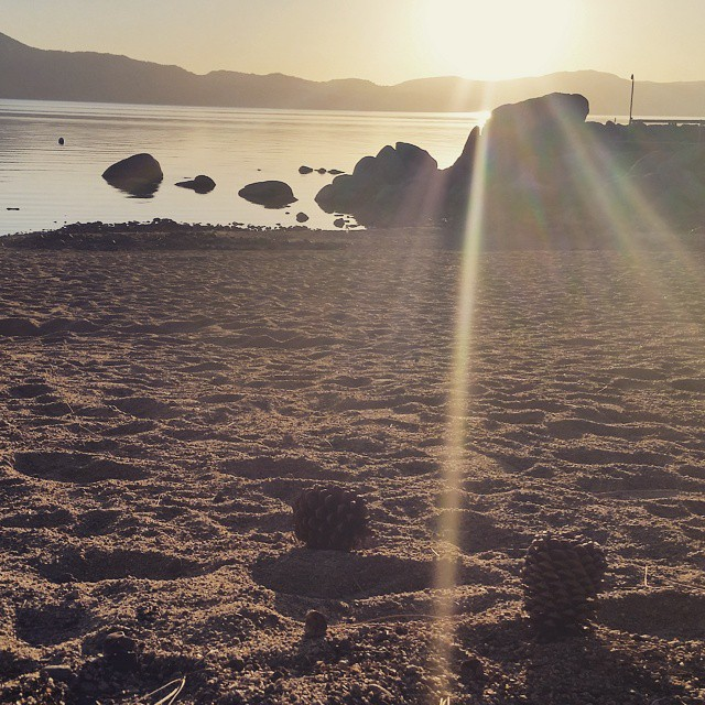 The sun beams through pinecones on the sandy beach. What a blissful evening in #tahoe #beach #lightbeams #laketahoe #graniterocx