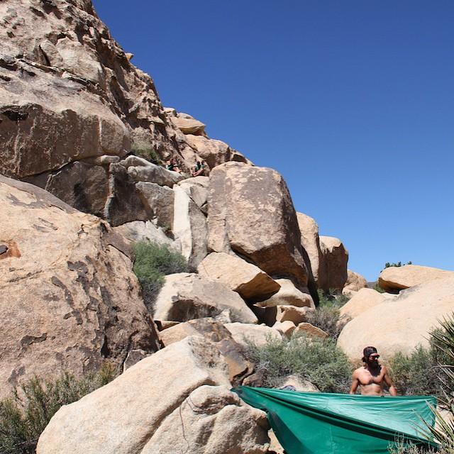 Beard On #joshuatree #california #climbing #beard #findyourpark