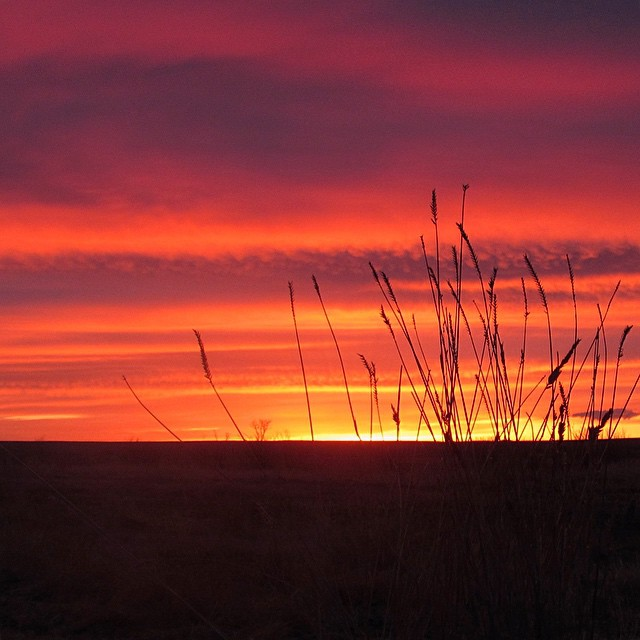 Turns out #prairiefire isn't just a mixed drink featuring hot sauce, or a type of sausage made by Redneck Meats. It's also a nightly phenomenon in the sky at #ASCLandmark.  Photo: Elizabeth Mullen  #sunset #fireinthesky #prairiesunset #prairie