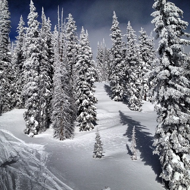 Finding a whole lot of pow after the storm. @steamboatresort #pow #skiing #theboat