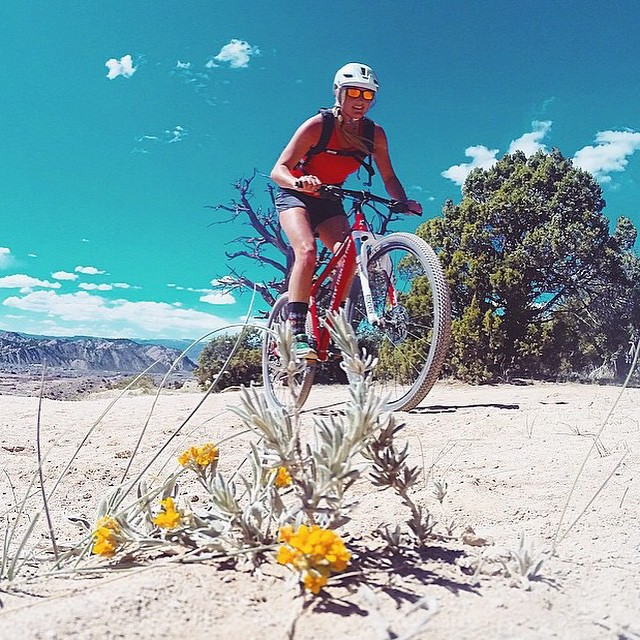 Did you know our rashies can double as mountain biking tops? Well, they can. And we think that is pretty rad. Thanks for the inspo @meredithdrangin! #getoutthere #miolagirl #mountaingirl #bikergirl #bikini #rashguardstyle