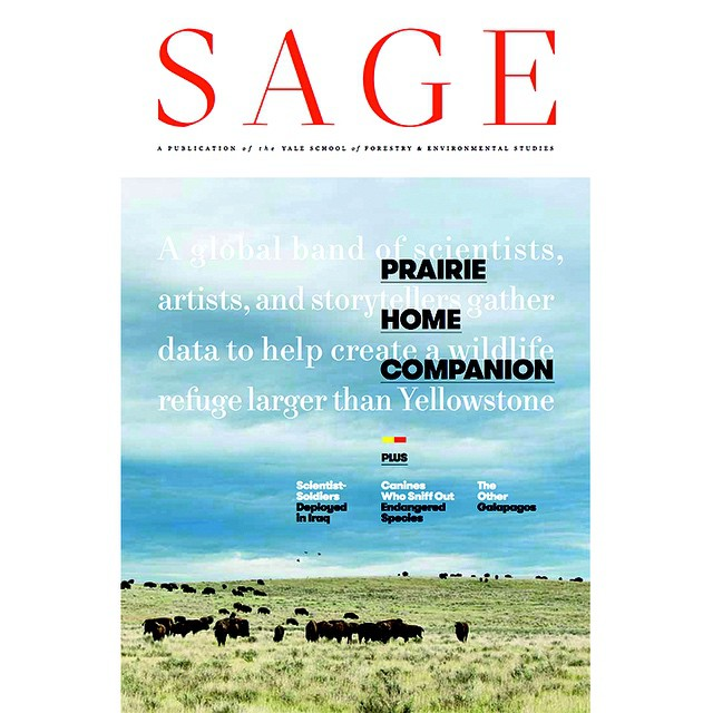 Our #ASCLandmark program is on the COVER of the Yale School of Forestry & Environmental Studies' publication Sage Magazine. The story features our volunteer #wildlife researchers on the American Prairie Reserve. Can't wait to see it in print!...