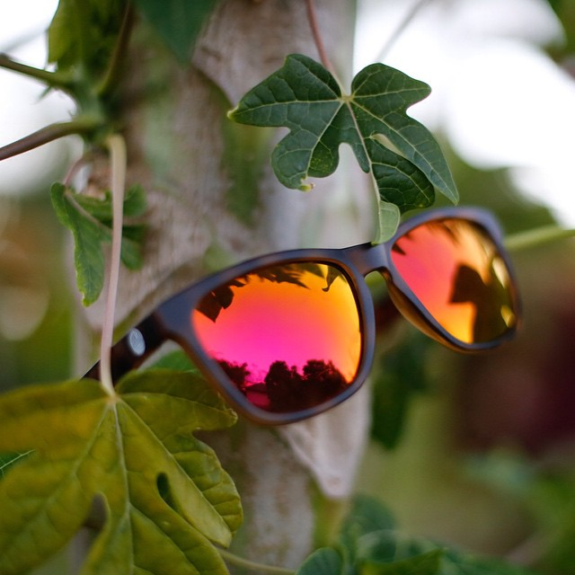 Pink Madronas were featured in The Manual's Mother's Day Gift Guide!  Named for the madrone tree found in Southern California, the Madronas from Sunskis are ideal for summer beach and mountain adventures. A vintage, wayfarer silhouette is paired with...