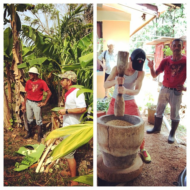 Do you know how rice is grown? On tour of Don Güelo and his family's farm here in Bahia Ballena (one of the last remaining farms that still produces food locally) you will learn about rice, as well as some of the other Costa Rican staples such as yuca,...