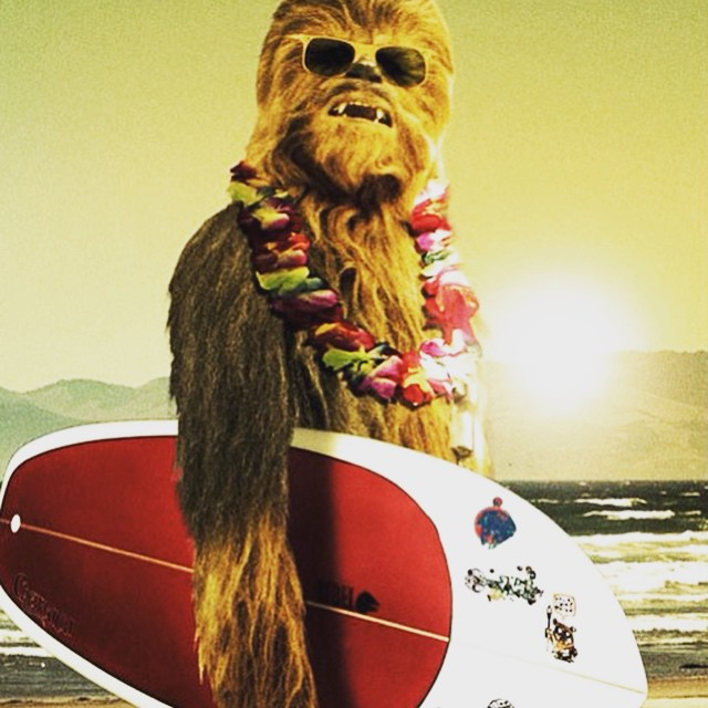 May the 4th be with you #starwarsday #stokedtosurf