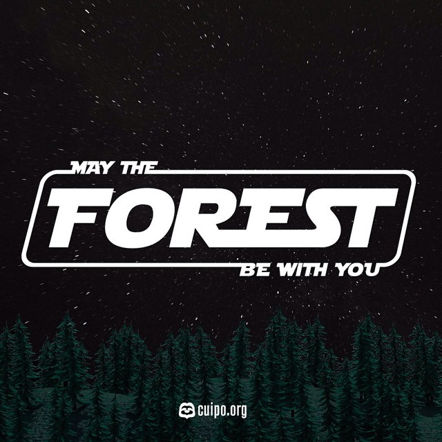 #MayThe4thBeWithYou #StarwarsDay #SaveRainforest