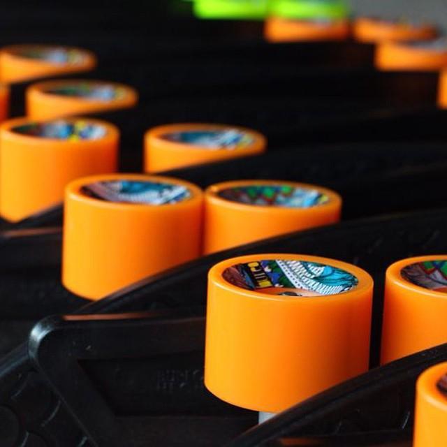 Tangerine season at the Bureo HQ...ripe for the picking! #NetsToDecks