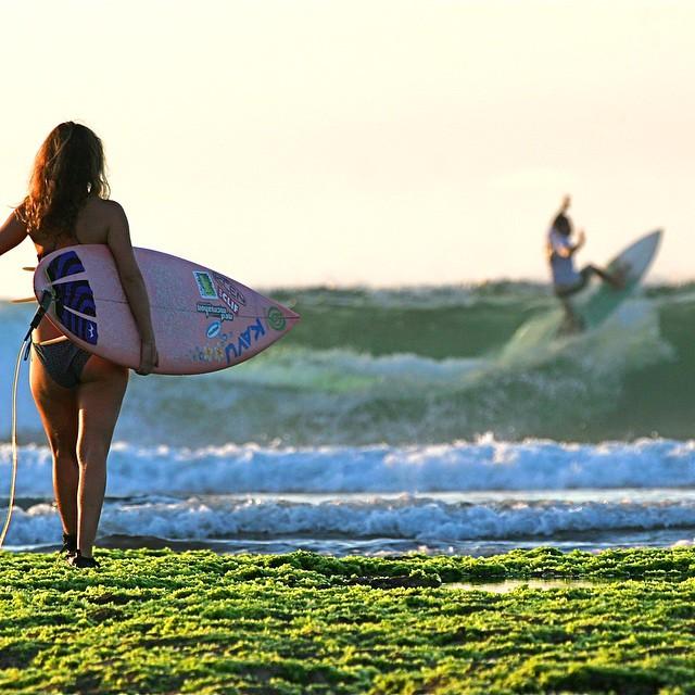 Seaweed surfing