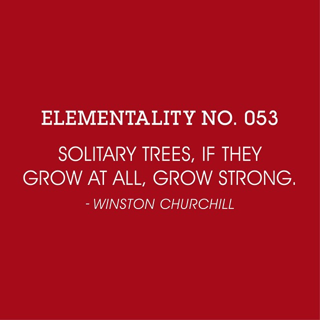 #elementality No. 053. #wisdomwednesday #knowledgeispower