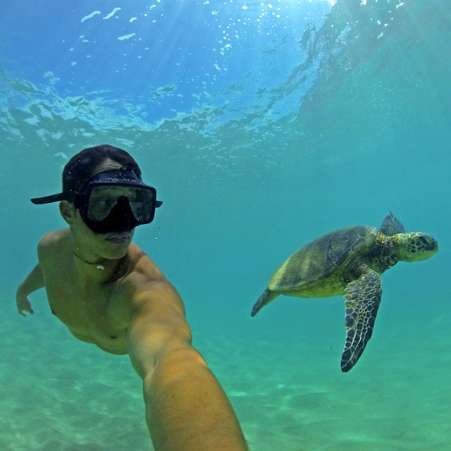 Floating with a turtle never gets old! Photo: @sharkbait_88 GoPro HERO4 | GoPole Bobber #gopro #gopole #gopolebobber #hawaii