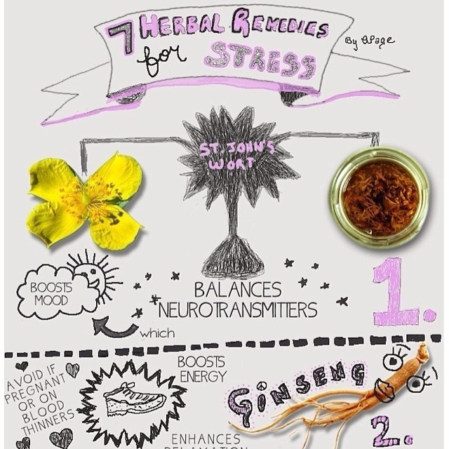 PAUSE FOR PREVENTION // 7 Herbal Remedies for Stress We love the healing power of herbs — especially herbs that can alleviate stress. Check out this awesome infographic exploring 7 stress relieving herbs from our friends at Health Central, and check...