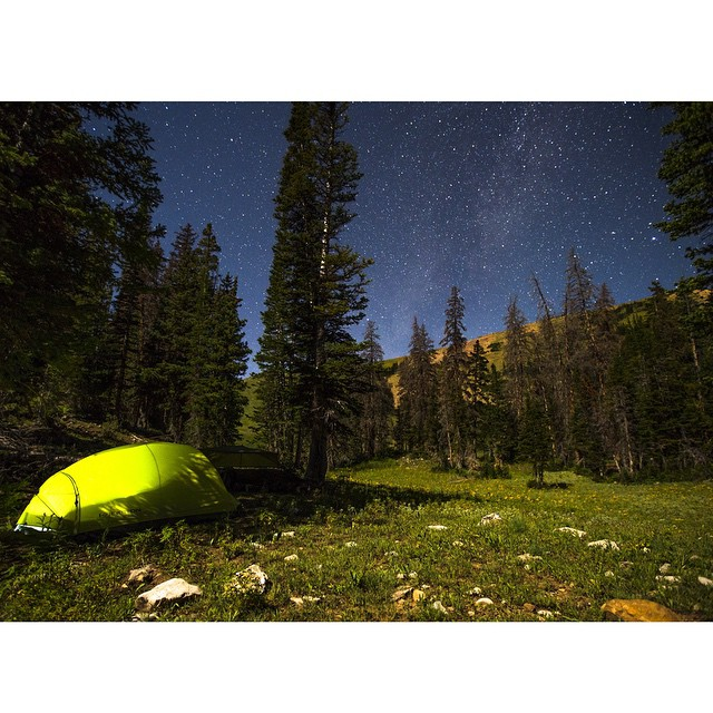 T minus three weeks until our Uinta Carnivore Survey launch. Who's excited to camp in the beautiful Utah backcountry? WE ARE! Photo: @jaybeyerimaging  #ASCUintas #beautahful #uintas #camping #stars #mountains