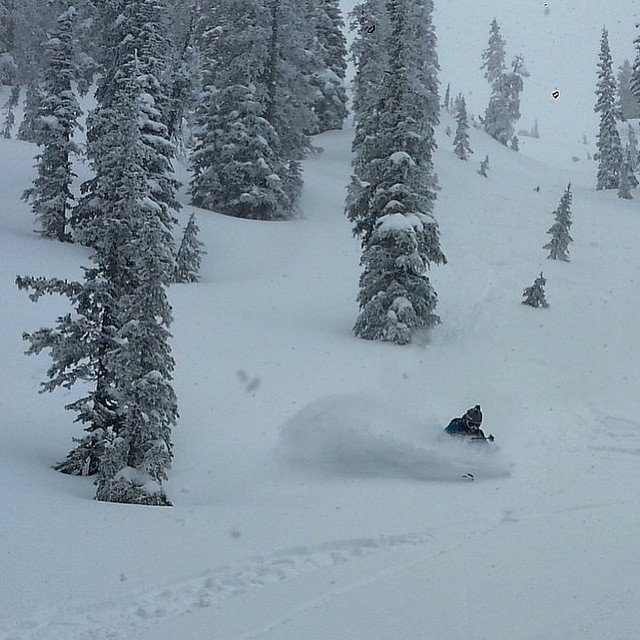 Instead of brunch and flowers for Mother's Day, The Mother Nature served up some pow for Flylow's @sydney_dickinson
