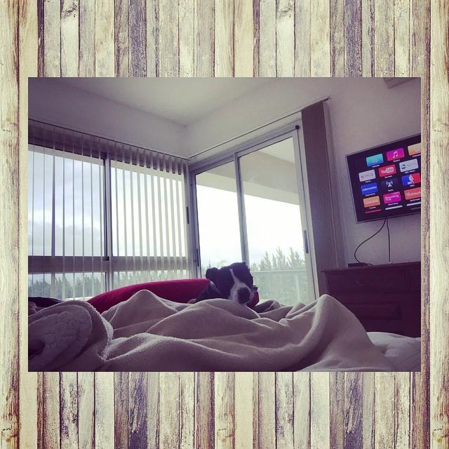 Hoy no salimos de la cama  #Suyay #netflix #AppleTv