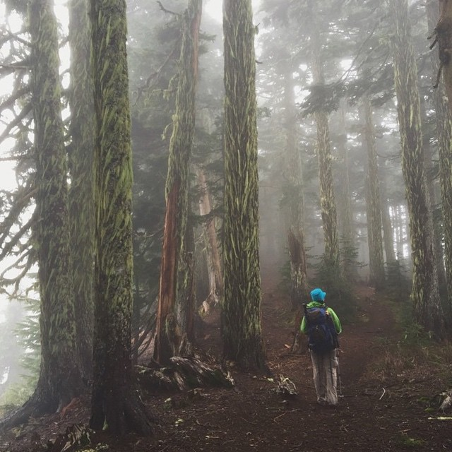Happy Friday, rad folks! Foggy #radparks adventure captured by @ash_tree_albertson on the Summit Lake Trail in Mt. Baker-Snoqualmie National Forest, Washington. #parksproject