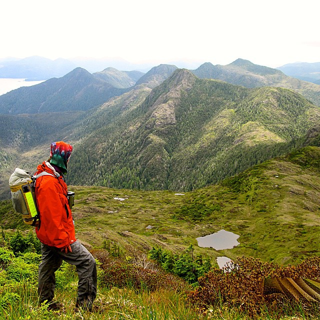 Hiking just below the summit of Mount Yatza on the island of Haida Gwaii, Beverly Boynton descends to the lakes below. There, she'll take a water sample for ASC partner scientist Dr. Loren Bahls' diatom study. •• Formerly known as the Queen Charlotte...