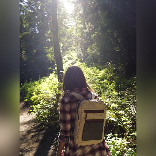 Himalayan nettle, lost in the California redwoods. #estwst #eco #handmade #laptopbag