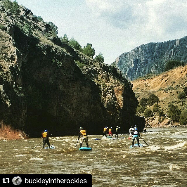 The students of SupCo's whitewater SUP guide school looking smooth in Little Gore Canyon! #halagear #adventuredesigned #whitewaterdesigned #sup #theweeklyinsta #colorado #wwsup #whitewater #weliveadventure #gopro #stlwhitewater #waterlust #supcolo...