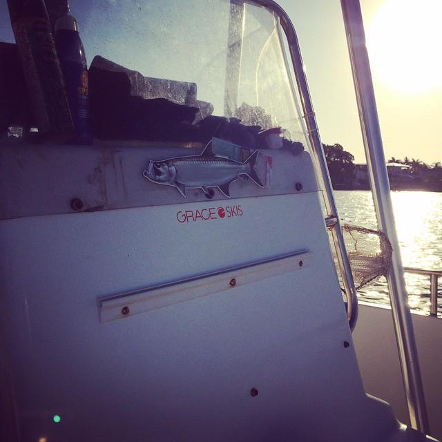 We got some saltwater therapy this #offseason #tarpon #snook #sunandfun