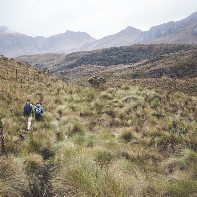 At 13,000 feet in the Cajas National Park, our biz dev manager @annie.nyborg treks through the Andean high grassland, or #páramo. A lot of folks are drawn to #patagonia every year, but if you're looking for something even further off the beaten path,...