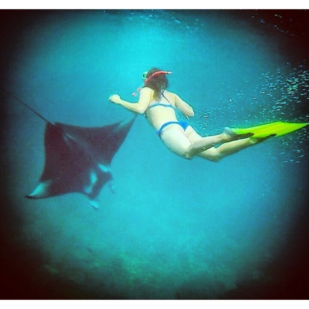 You make me feel like dancing! Tag a friend you want to dance with! Or that wants to dance with a manta ray like @insta_susi