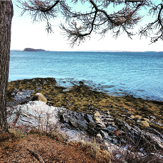 Island inspiration #flowfold