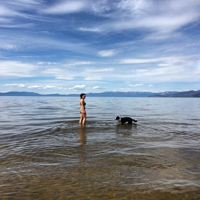I think I picked the wrong side of the lake to go swim! Save water where you can guys, it's just the start of summer and it takes a 300ft walk to get deep enough for a swim. #laketahoe #californiadrought #doyourpart #sunsoutbunsout @epicbar @stcrossfit...
