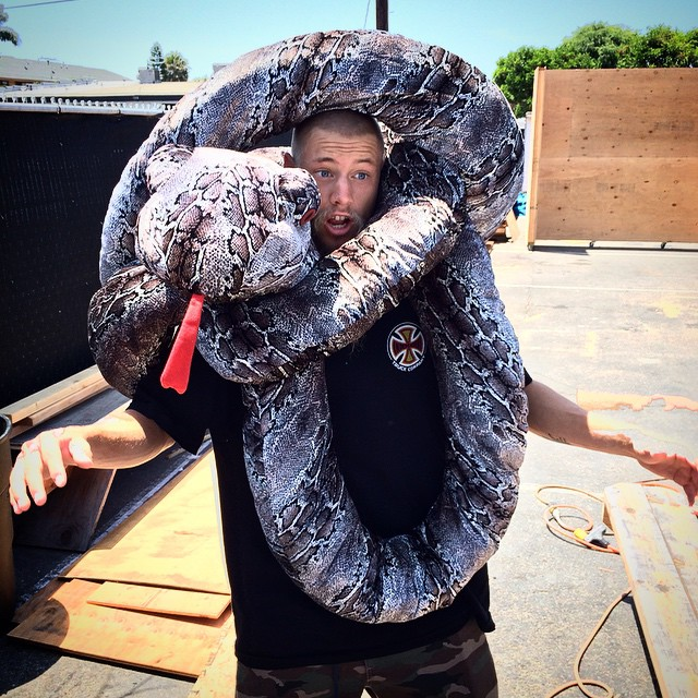 @greyson_fletcher >>> no snakes!