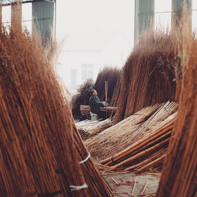 Ensuring quality shafts every time requires going straight to the source. For Soul Poles, that is Guangdong, China // #soulpoles #qualityshafts #bambooskipoles #soulfulsituations #plantyoursoul