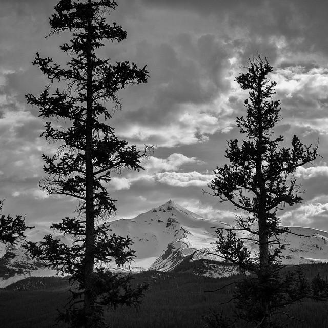 13,165-foot Tokewanna Peak appears before the #ASCUintas crew.  Photo: @mqkautz #MountainCrushMonday.  #totallylovetheuintas #uintamountains #beautahful #hikingutah #mountains