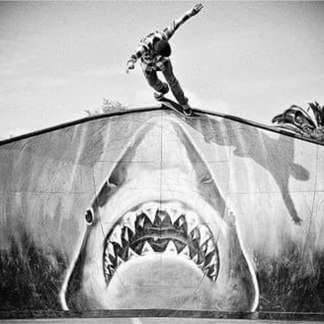 Shark nose grind #revbalance #findyourbalance #grind #shark #ride #boardsports #skateboarding