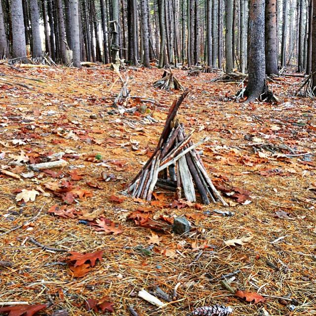 In the woods #flowfold