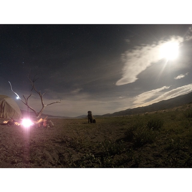 "We just checked in for a Summer Break With @johnjamun  to see how things were going: ""My dog and I shot out to pyramid lake the other night. photo settings: 20 sec exposure, 5500 IS0, and 1 in and out cheeseburger to get Sensi to stay still. #gopro""..."