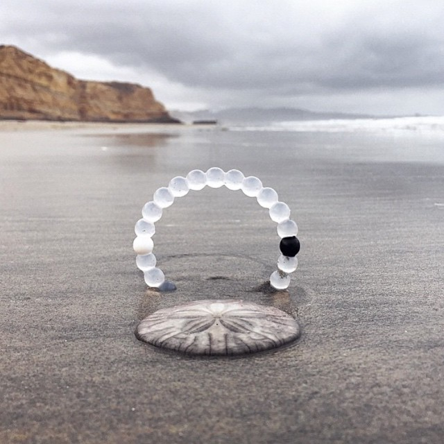 Brought to you by the currency of the sea #livelokai  Thanks @Serenamwright