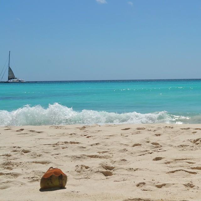 Con vos a coco y playa. #coco #summer #igs_photos #ig_exquisite #ig_caribbean_sea #ig_great_pics #agean_fotografia #nikond3100 #d3100 #islasaona #playa #verano #turquesa #beach #republicadominicana #globe_travel #mytravelgram #princely_shotz #caribe #sea