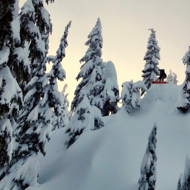 @rwmclaughlin in his happy place @stevenspass #fineliving